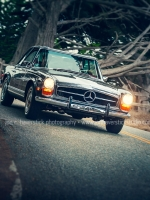 Stanford 280SL 17-Mile Drive-JCHP-001